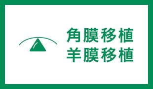 角膜外来(角膜疾患一般・PKP・DSAEK・羊膜移植・クロスリンキング)